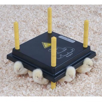 15 Chick Comfort Brooder